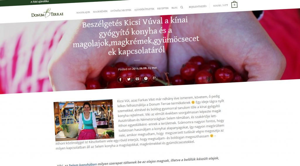 5elemkonyha_rolam_website_donumterrae
